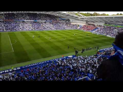 Sussex By The Sea by Donna Marie Hughes at The Amex. Brighton v Bristol City 29/4/2017