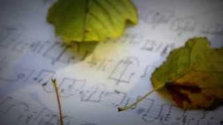 Частные Уроки по Фортепиано, синтезатору.mpeg
