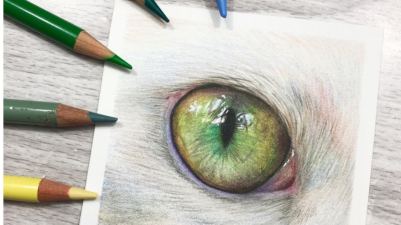 How To Draw Green Cat Eyes In Colored Pencil Youtube
