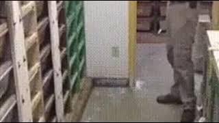 Ужасающий прикол со змеёй