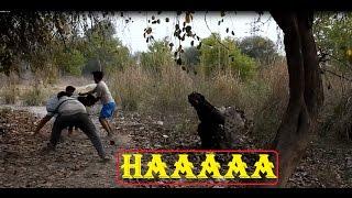 हिम्मत हो तो जब ही देखना इस विडियो को || Funny Video  || BEST VINES COMPILATION