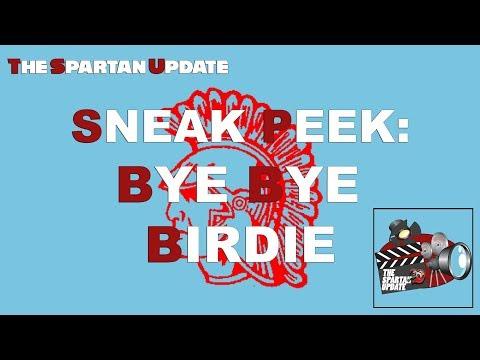 Bye Bye Birdie Preview