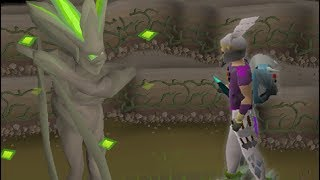 Ex-HCIM Takes on New Challenges in OSRS