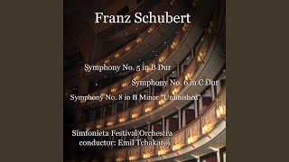 Symphony No.5 in B Dur, D. 485: 2. Andante con motto