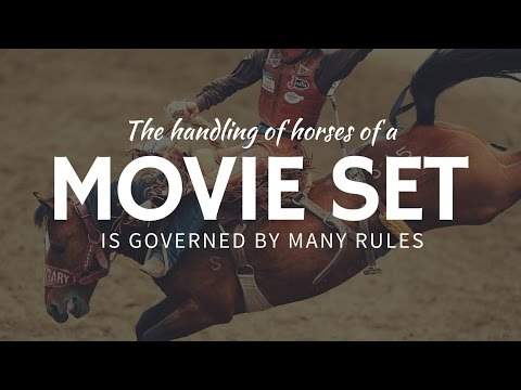"""How to handle horses in MOVIES to say that """"no animals were harmed"""""""