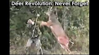 Ozzy Man Reviews: The Great Deer Revolution