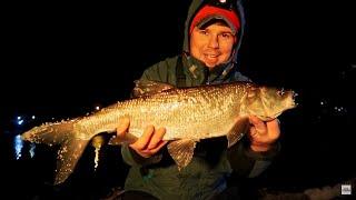 Зимняя рыбалка на спиннинг на Москве реке Какая рыба и когда клюёт ВихровLIFE