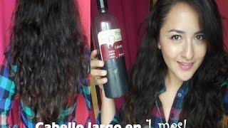 como hacer crecer mi cabello? ♡ Shampoo de caballo - Coqeta