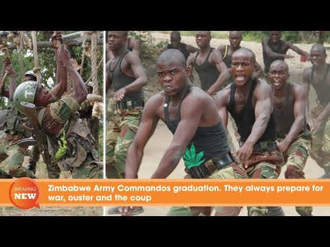 Zimbabwe Army Commandos graduation: They always prepare for war, ouster and the coup