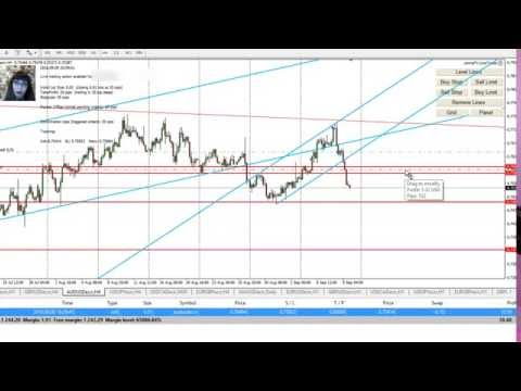 Forex For Beginners, Low Risk Trading, 3% Profit in Week 1
