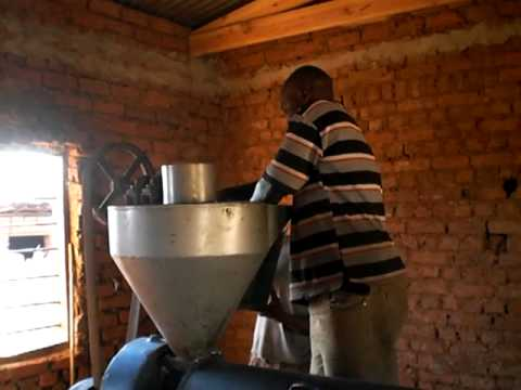 Small Scale Sunflower Oil Extraction in Malawi