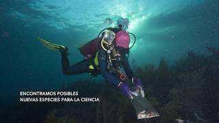 Expedición a los Cayos sumergidos del Oeste en el Banco de Campeche