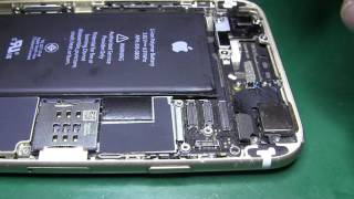iPhone 6 проблемы с подсветкой