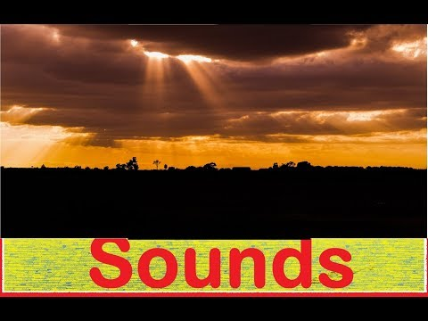 Dramatic Sound Effects All Sounds