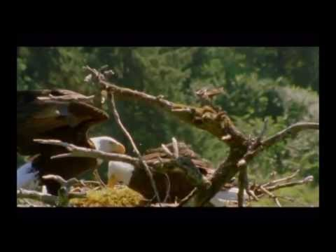 Magical Kenya - Unravel Travel TV