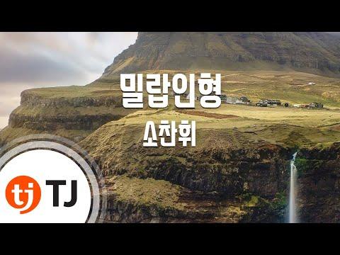 [TJ노래방] 밀랍인형 - 소찬휘 (Beeswax Dolls - So ChanWhee) / TJ Karaoke