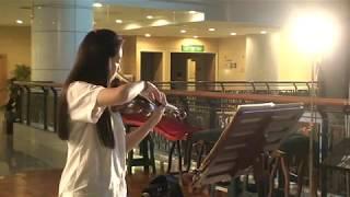 Paganini Moses Fantasy (Variations on the G String)