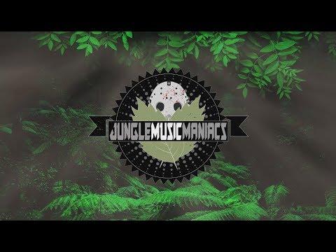 OneRepublic & Seeb - Rich Love (Xera & Bisken Remix)