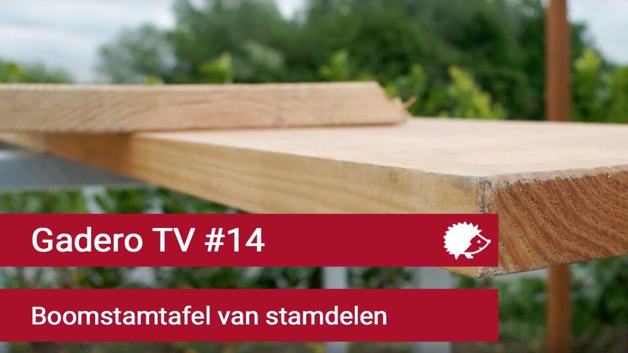 Tafel Maken Van Boomstam.14 Boomstam Tafelblad Maken Van Stamdelen Youtube