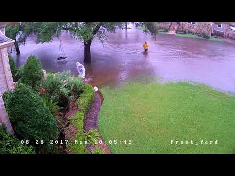 Houston Harvey Flood - Meyerland Neighborhood - August 27 2017 - Front Yard Time Lapse