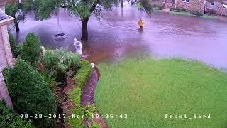 Houston Harvey Flood - Meyerland Neighborhood - August 27 2017 - Front Yard Time Lapse