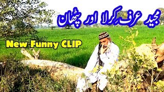 New Clips Funny Punjabi || Majeed Kirla New Clip || Punjabi Funny New Video Clips