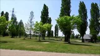 山田池公園「南エリア」の木の花:風景:芝生の丘:運動広場 ゴスペル♫...