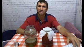 Заказ в интернете чайного гриба. Посылка с чайным грибом