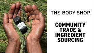 Sourcing our Community Trade Tea Tree - The Body Shop