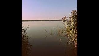 Рыболовный мир с Ильёй Солигорское водохранилище Ловля карася и подлещика