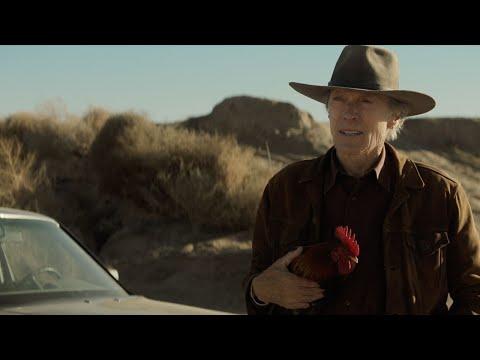 CRY MACHO – Clint Eastwood: A Cinematic Legacy