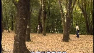 台灣世紀之旅-第037集 奧萬大保安林