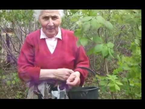 Deda  красивая песня про Маму - Marsis - полная версия
