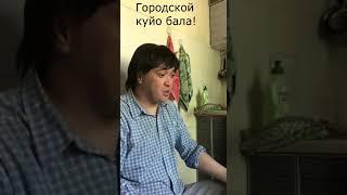 Городской куйеу бала )))