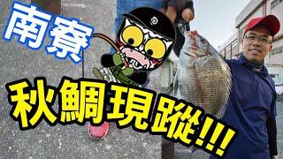 秋鯛出水~興趣使然 釣魚 人VS南寮小搞搞~巧遇釣友之釣遊~