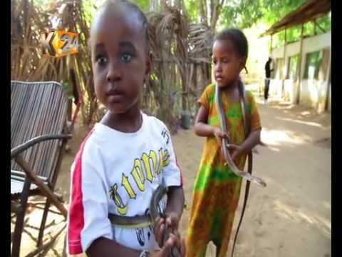 KUFA KUPONA: Arafat Manyoka,anayefuga nyoka Kwale
