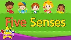 Kids vocabulary - Five Senses - Learn English for kids - English educational video