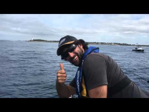 Reel Time Fishing Charters Yellow Tail Kingfish Melbourne Victoria RIP