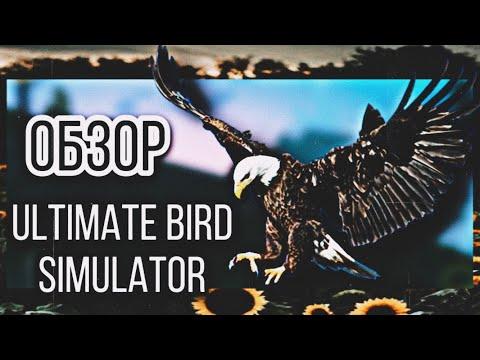 |LEO - MOON| 🦅« ОБЗОР - Ultimate Bird Simulator» 🦅