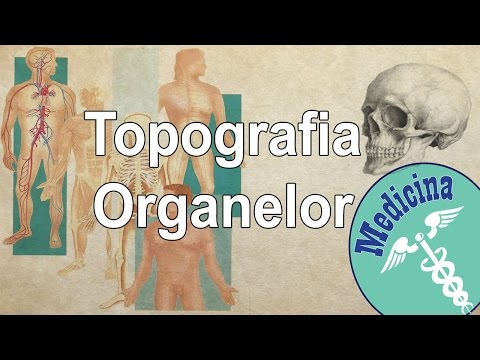 Anatomia spirituală a ființei umane from YouTube · Duration:  2 minutes 8 seconds