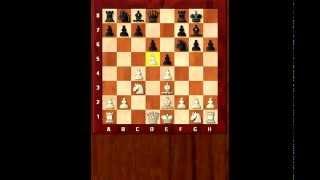 Что такое позиционная игра? Система Авербаха в Староиндийской защите. Петросян. Шахматы. Гринис