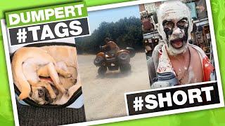 Hele korte filmpjes in een compilatie #MAND | Dumpert Tags
