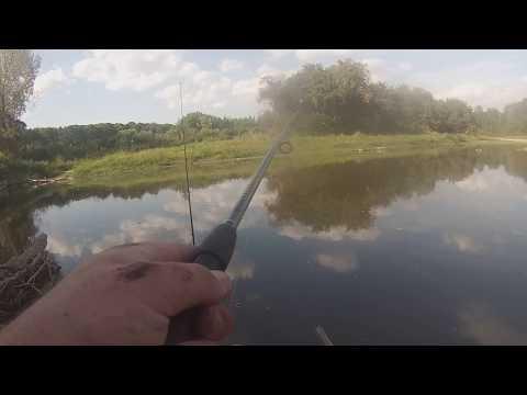 Cass River, Michigan Fishing