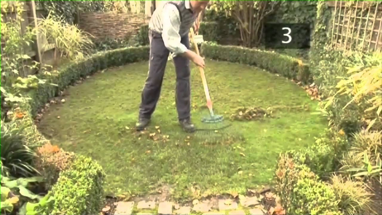 Autumn Lawn Care Tips And Maintenance Advice Youtube