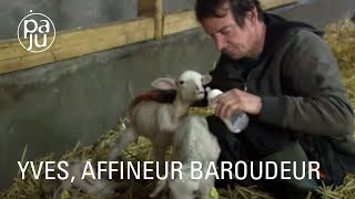 Download lagu Éleveur de brebis atypique, Yves fabrique des fromages bio à l'arôme de ses montagnes