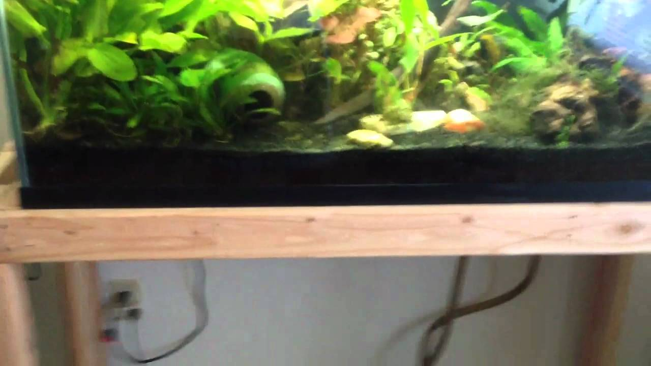 Double 90 gallon fish tank stand youtube for 90 gallon fish tank stand