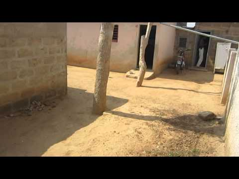 A walk around cpaac zou orphanage in Dassa - Benin (West Africa!)