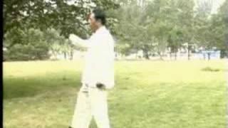 Feng Zhi Qiang - Xinyi Hunyuan Taiji 48 Form