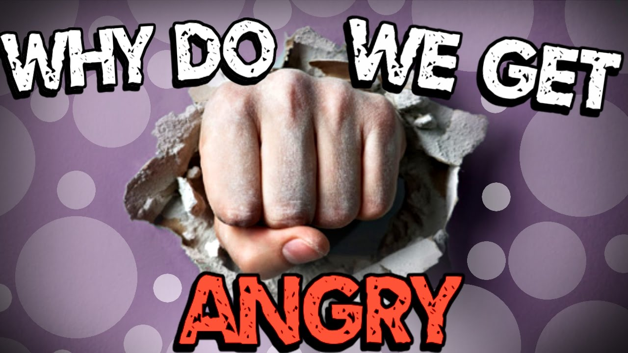 why do we get angry - YouTube