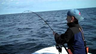 Extreme Jig and Pop with East Coast Charters.mov